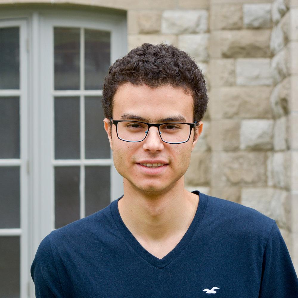 Farouk Shoukry