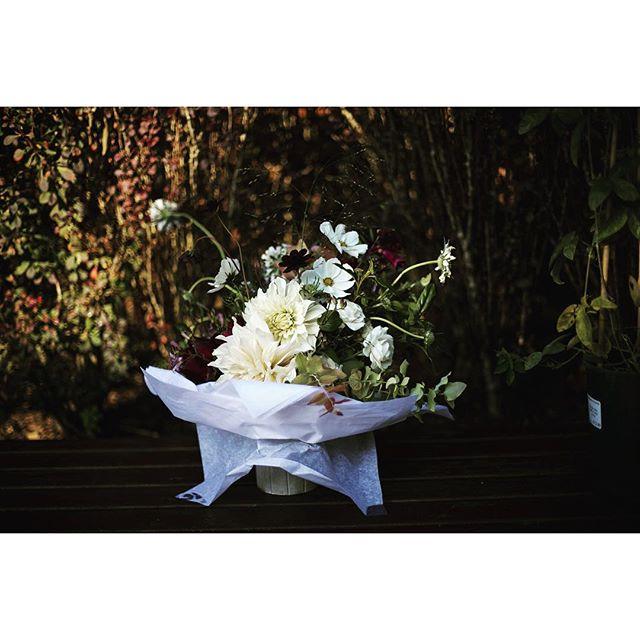 Ellie's bouquet! Stunning dahlias @bloomfieldoflondon thank you! @zestflowerslondon thank you stunning English roses, wild flowers as always ! #hornimanmusuemweddings