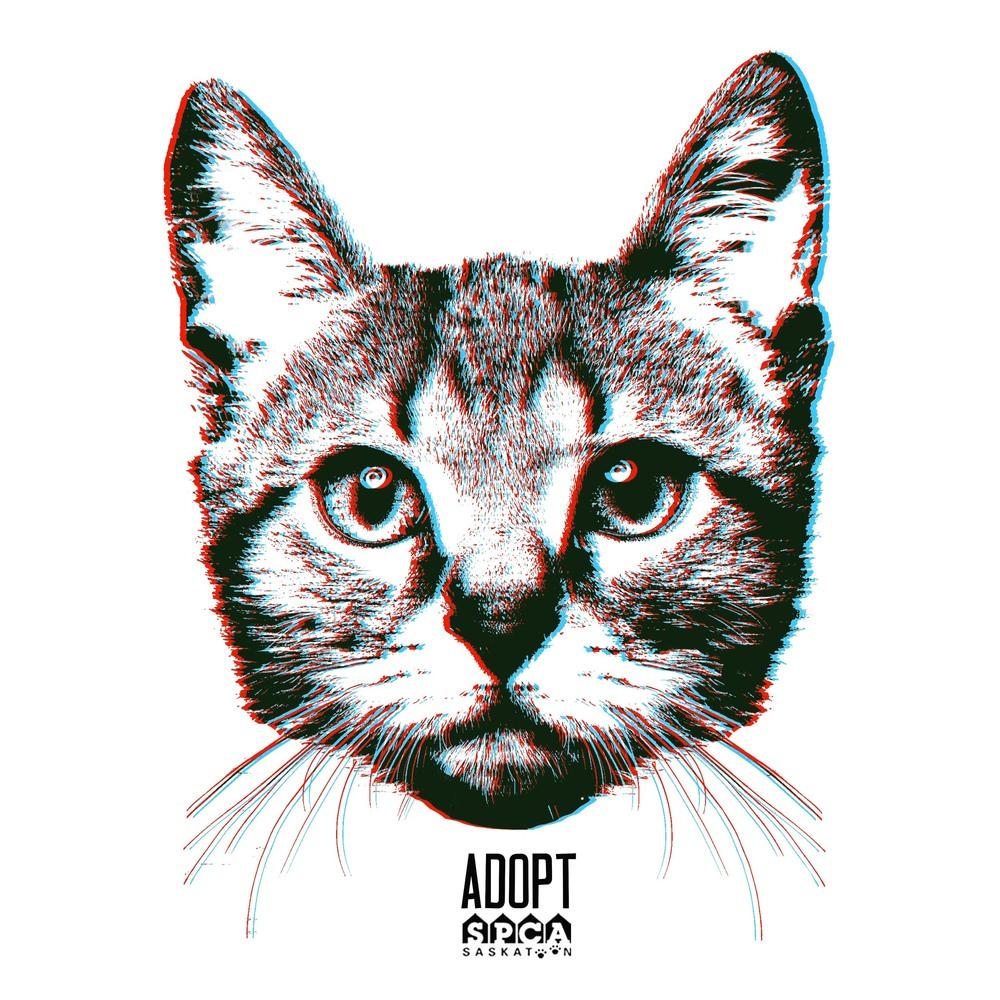 SPCACAT.jpg