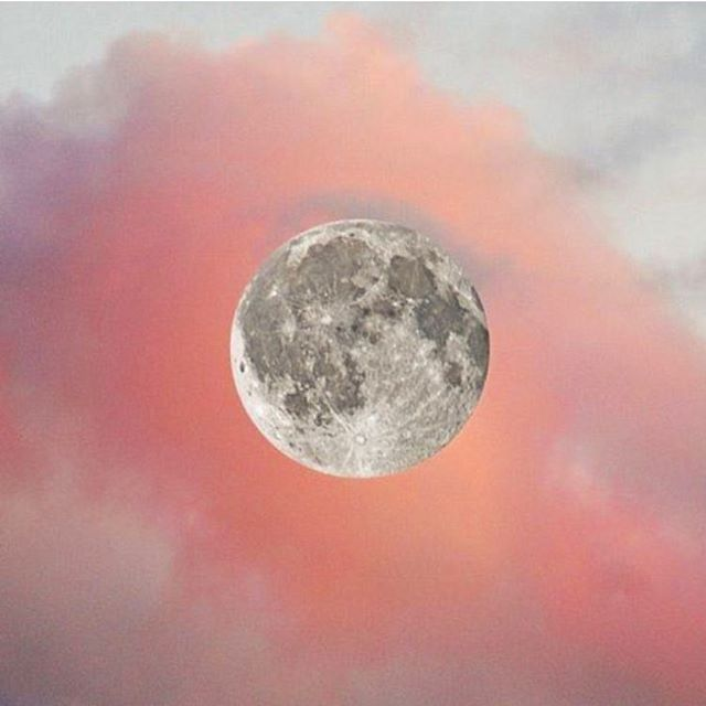 Happy full moon, goddesses 🌙  Pic by @orchardstlove