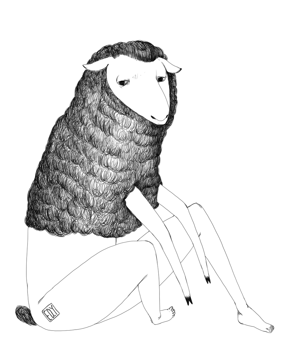 blacksheep01_edy.JPG
