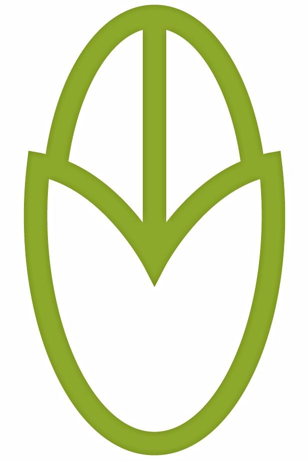 GreenBean.jpg