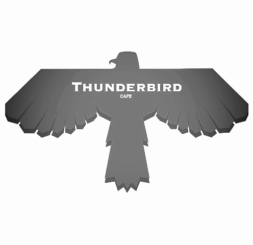 thunderbird log square .jpg