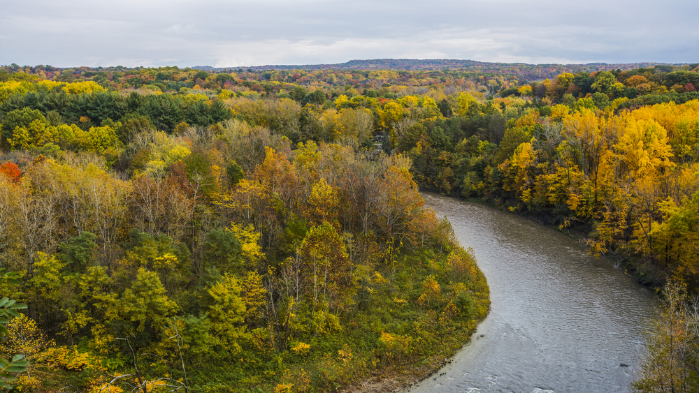 Chagrin River.jpg