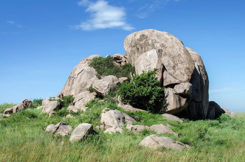 A rock formation known as a  koppie , rising from the flat surrounding plain. Late in the afternoon one can sometimes see lions sunning themselves on these outcrops. / Serengeti