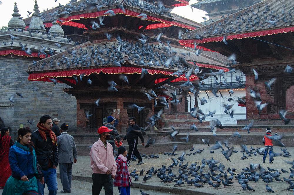 Nepal_D7000_2651-Crop.jpg