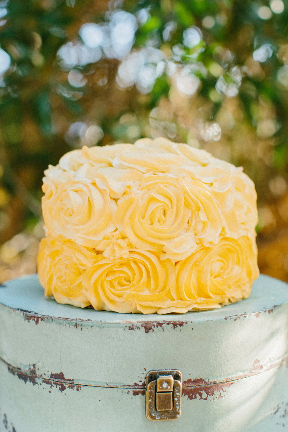 rosette cake daytona may photography brunch wedding shoot