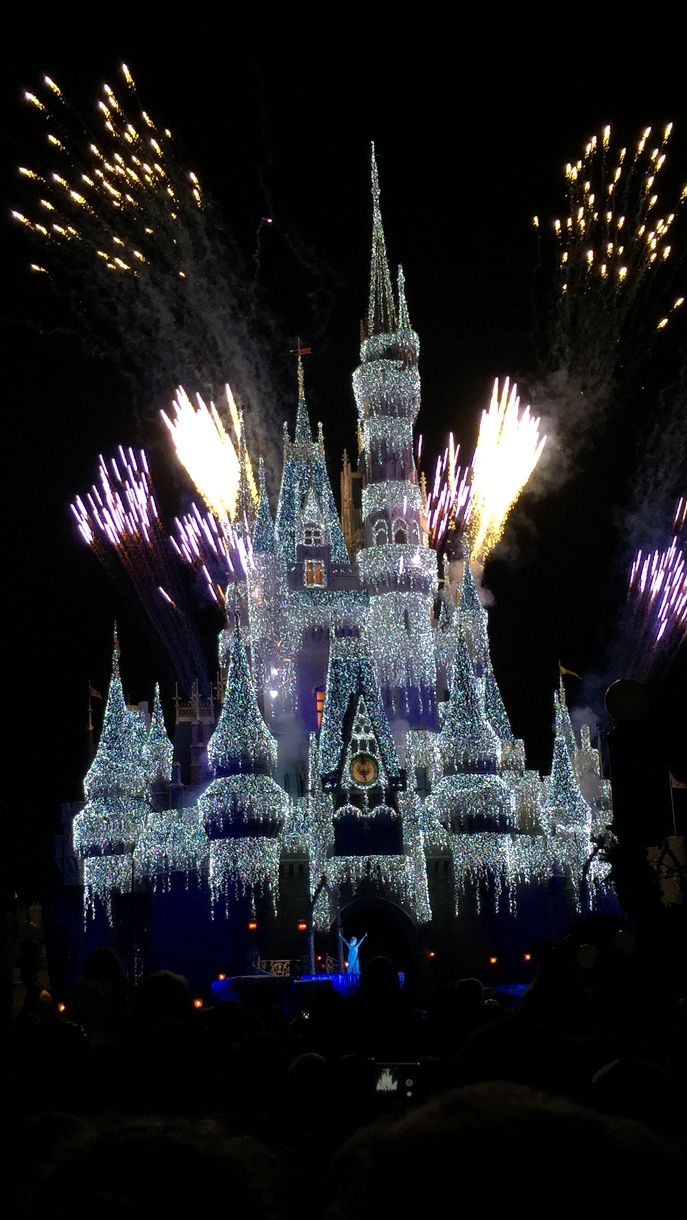 I've never seen Cinderella's Castle look so beautiful. During the holidays, Elsa turns the castle into her own frozen palace.