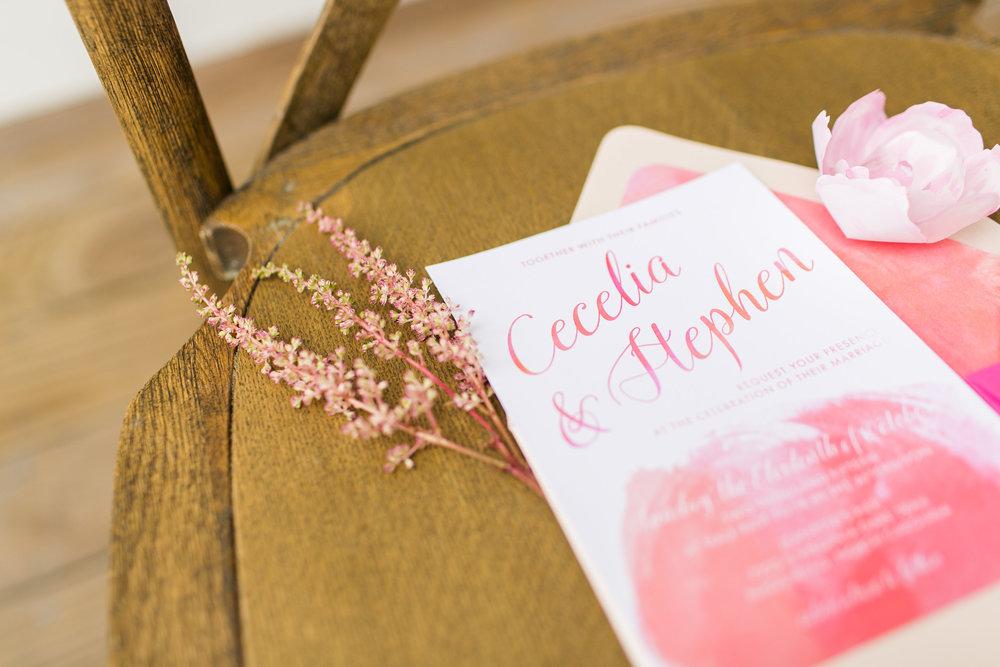 Amanda Hedgepeth Photography and PaperDolls Design