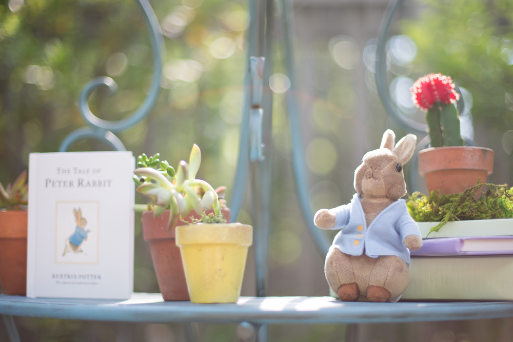 peter rabbit styled shoot