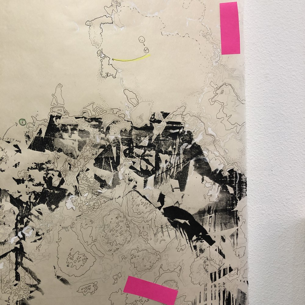 Catherine Reinhart Manifold Landscapes