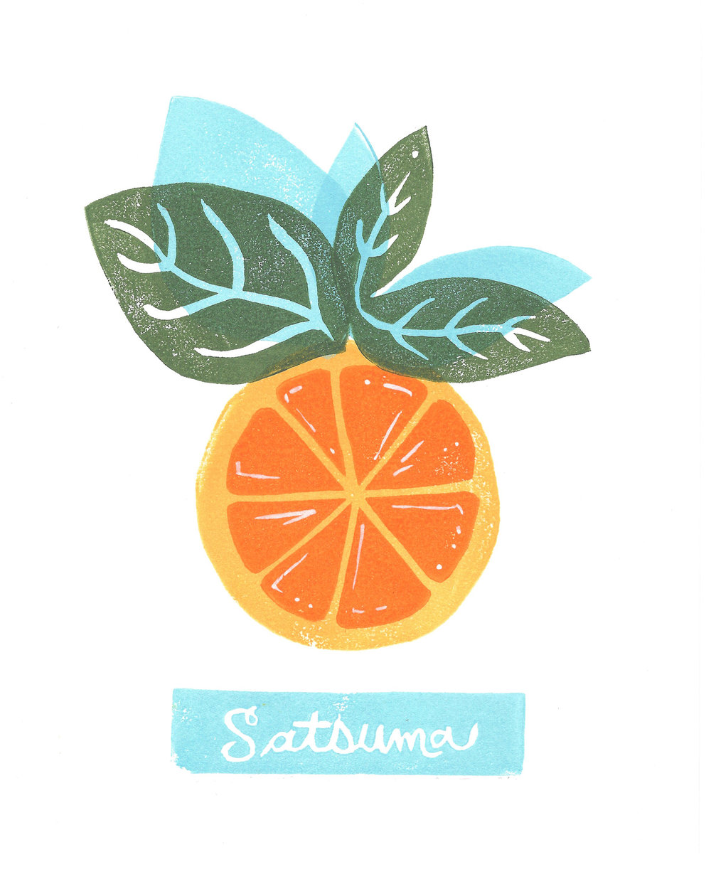satsuma for print.jpg
