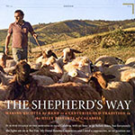 Shepherd's Way