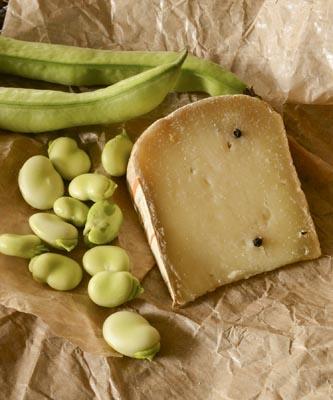 Fava & Cheese