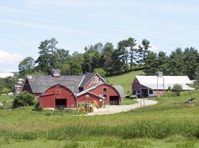 Landaff Farm