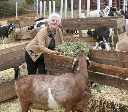 Jennifer with goats