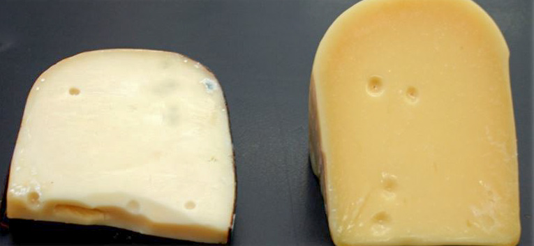 Light-bleached Gouda (left); normal Gouda (right)