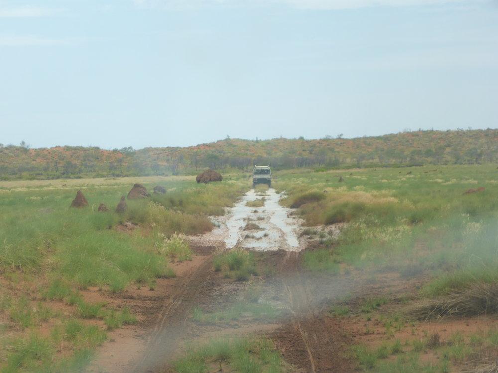 Madie photo's from water monitoring trip last week at Wili , Kuinarjarti and Purlawala 3.jpg