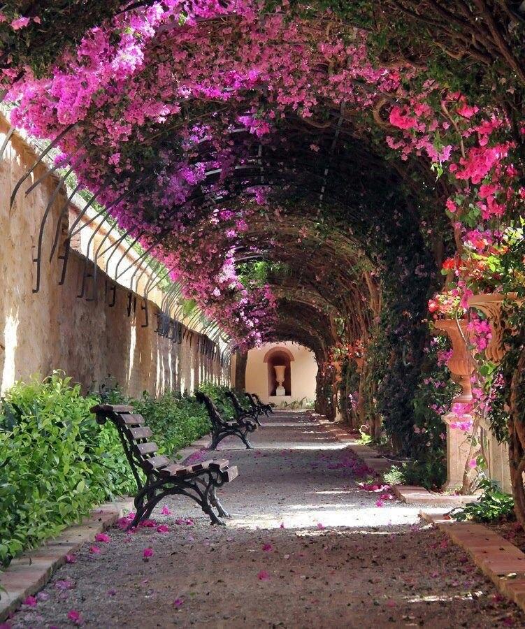 Monforte Gardens Valencia LMDES