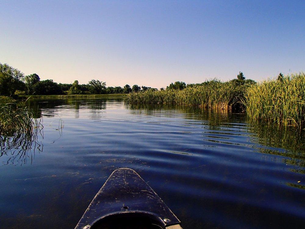 Beautiful Minnow Pond