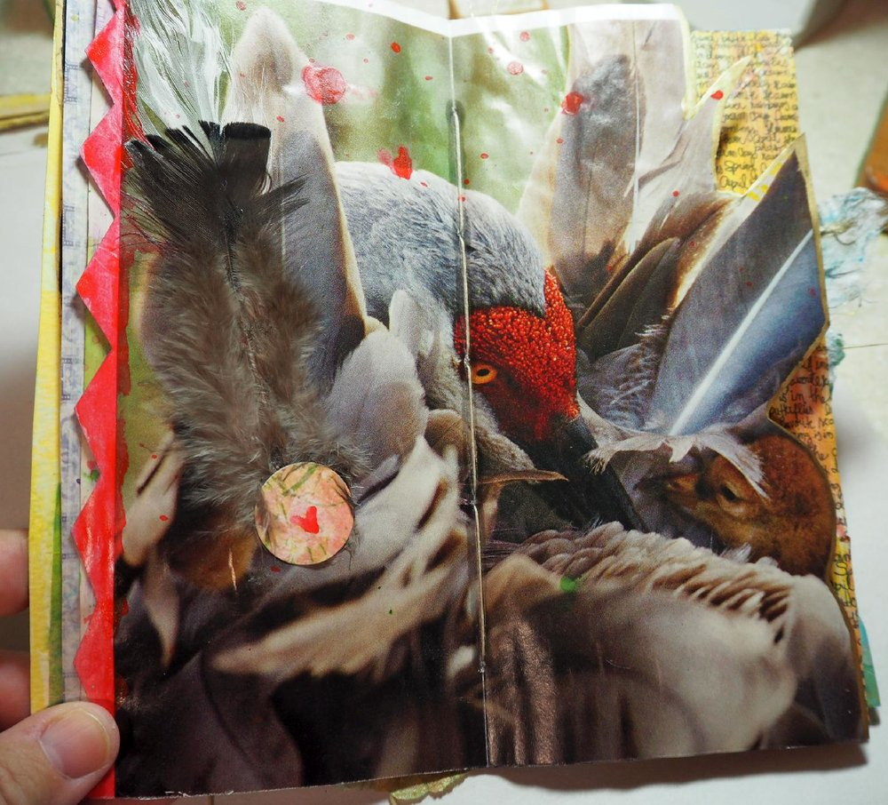 sandhill crane page: lenna