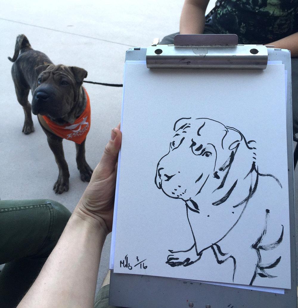 Dog port 1.jpg