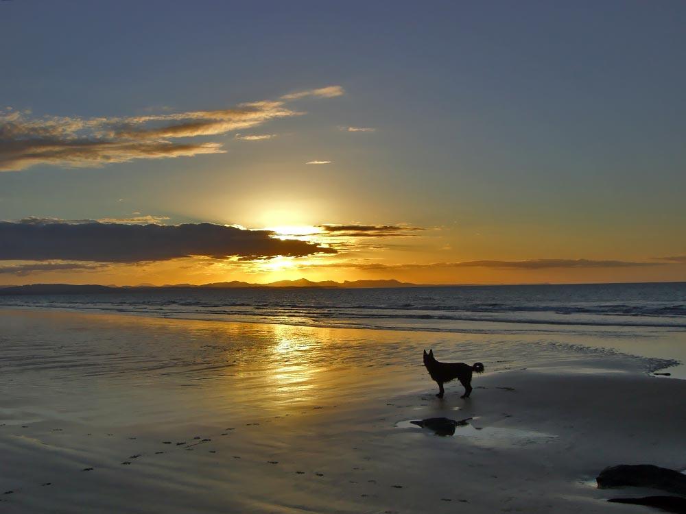 Coles Beach, Devonport