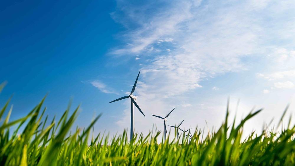 Management Consultants for Alternative Energy Industry | Elk Ridge Advisory