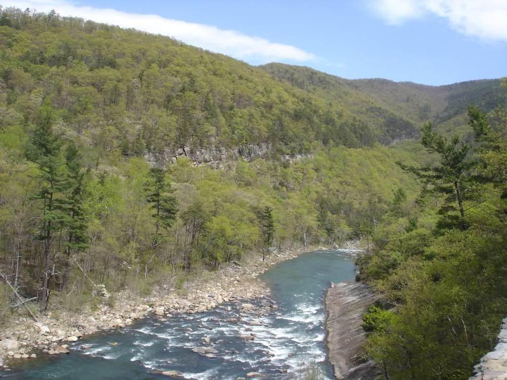 Goshen Pass from Overlook