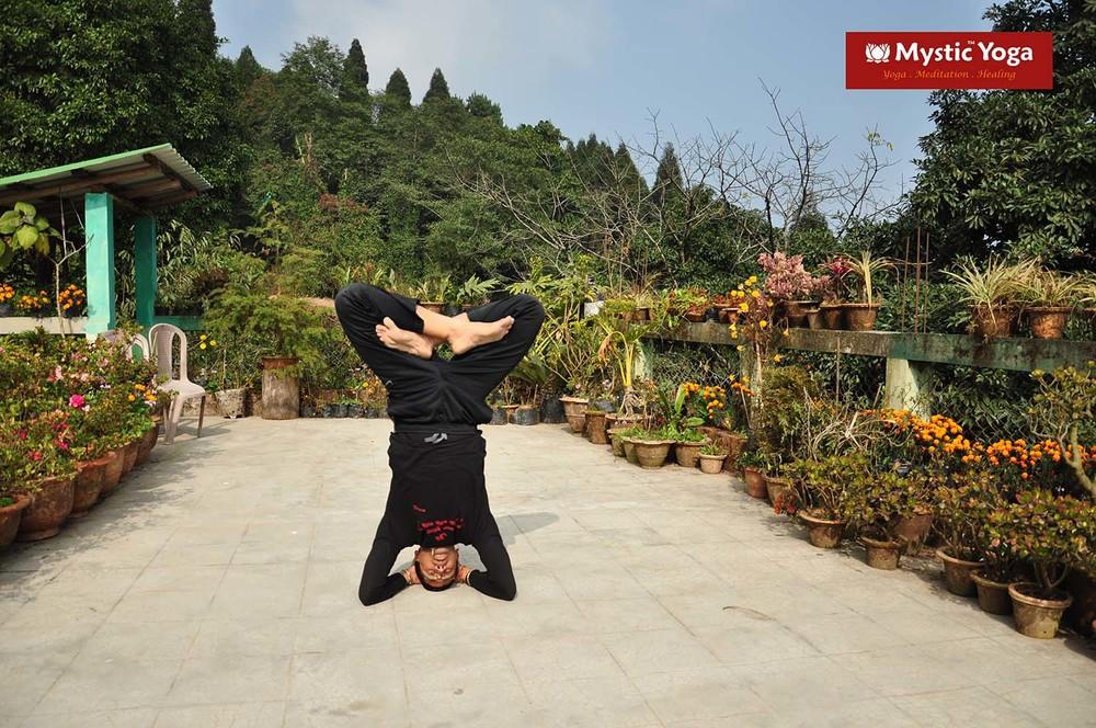 Mystic Yoga 27.JPG