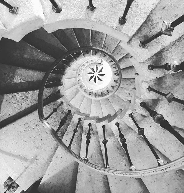life. ◌ ◌ ◌ ◌ ◌ ◌ ◌ ◌ ◌ ◌ ◌  #aesthetics #goldenratio #photography #viscayamuseum