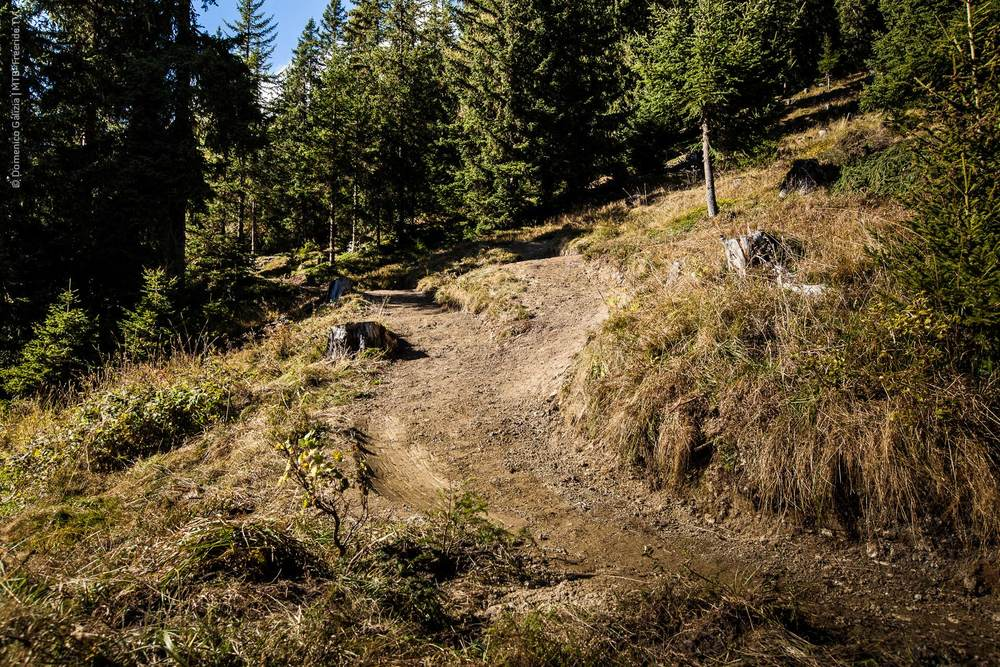 ridable_trailbuilding_Gerlos_2014-030.jpg