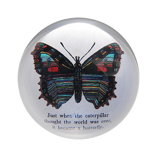 PW_Butterfly_LR.jpg