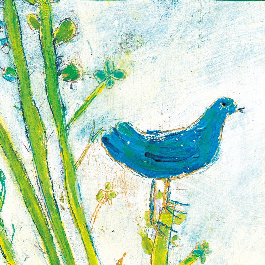 BlueBirdRight_12x12_LR.jpg