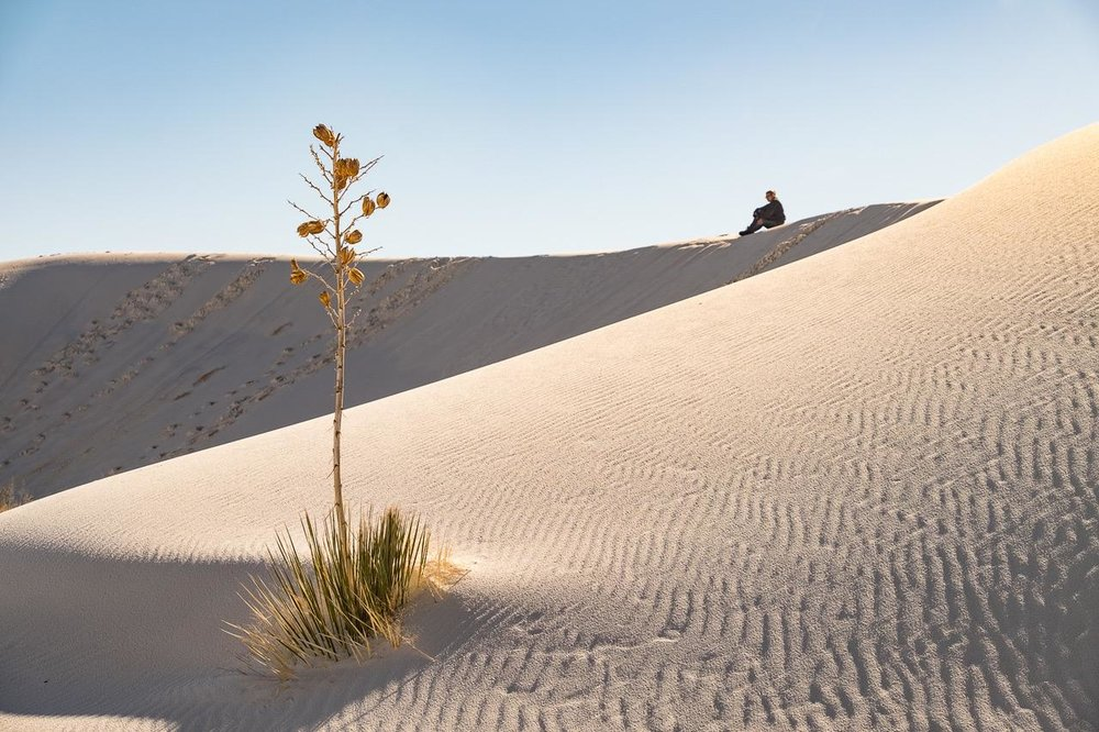 White Sands  (c) Richard Wolk