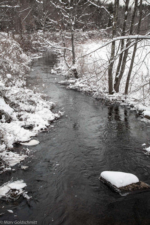Winter Stream  (c) Marv Goldschmitt