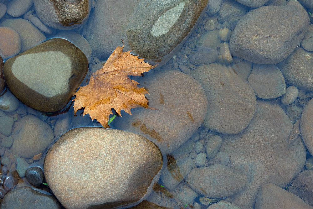 River-Rocks-24.jpg