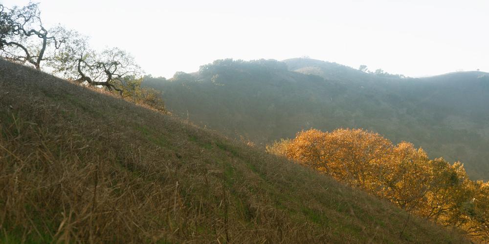 Corde Valley 1