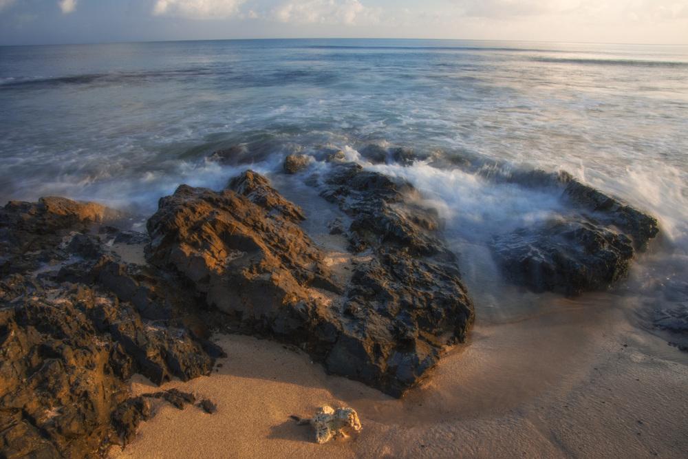 Shoys Beach 6