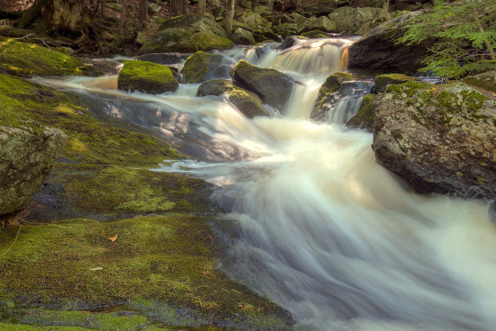Pondshore Falls 1