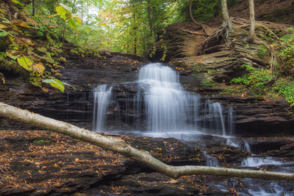 Ricketts Glen 4