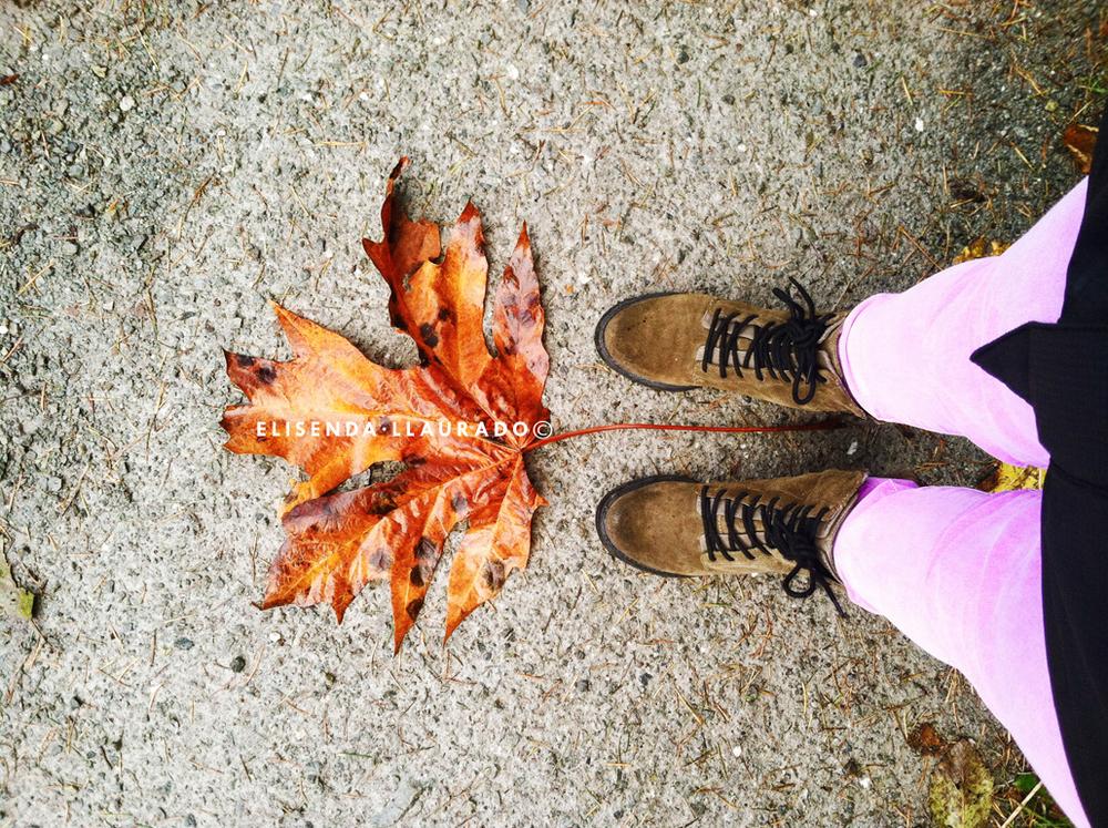 Feet&Leaves, Fall 2013.