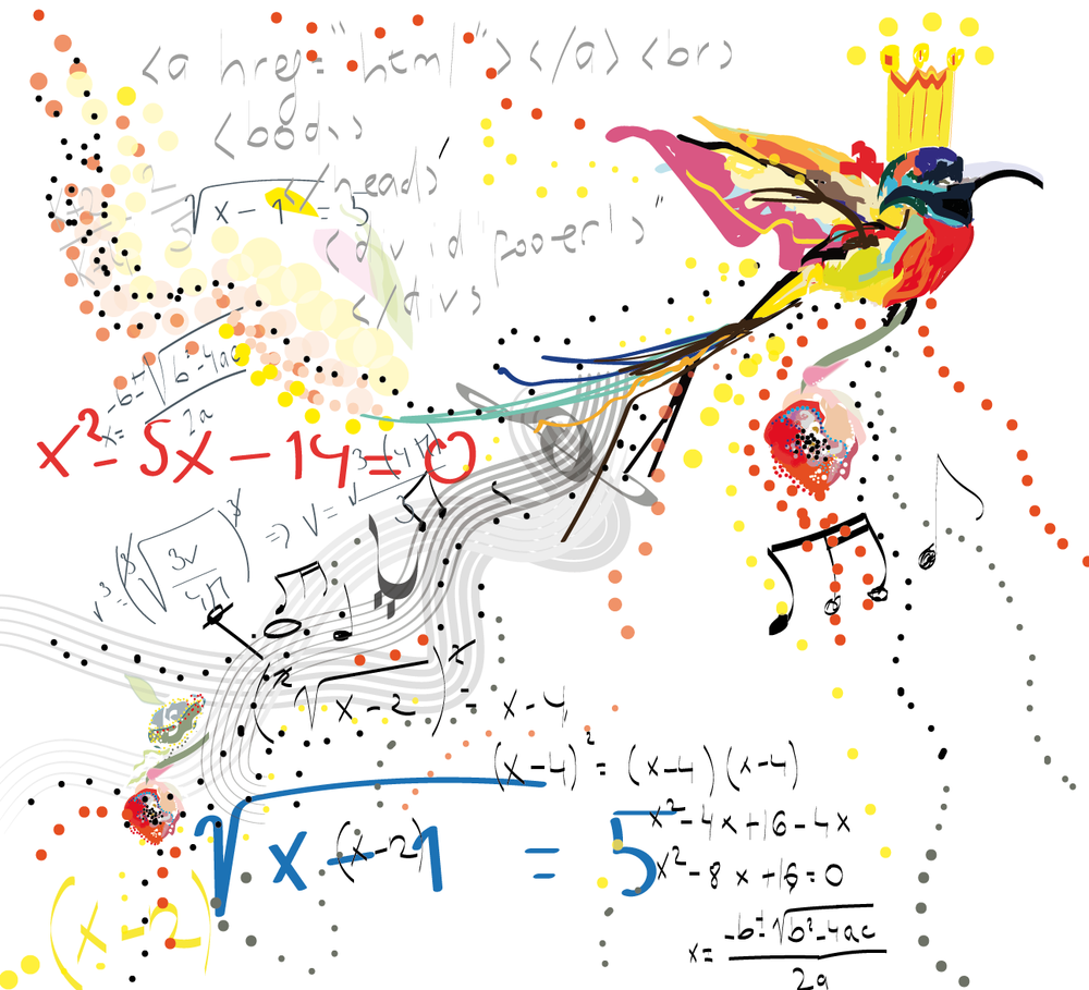 colorful bird right brain