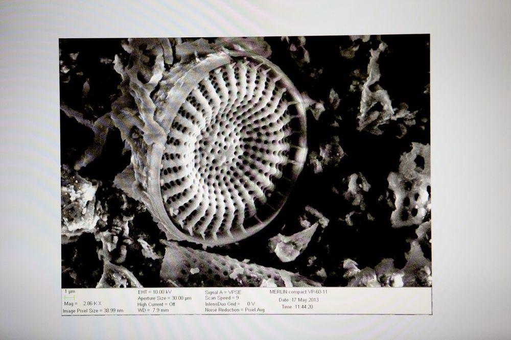 microscopio-electronico4.jpg
