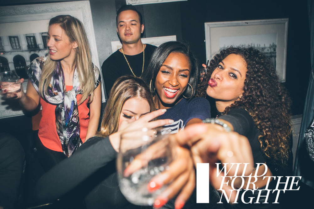 WILD FOR THE NIGHT | Saturday Dec 12 | Stori