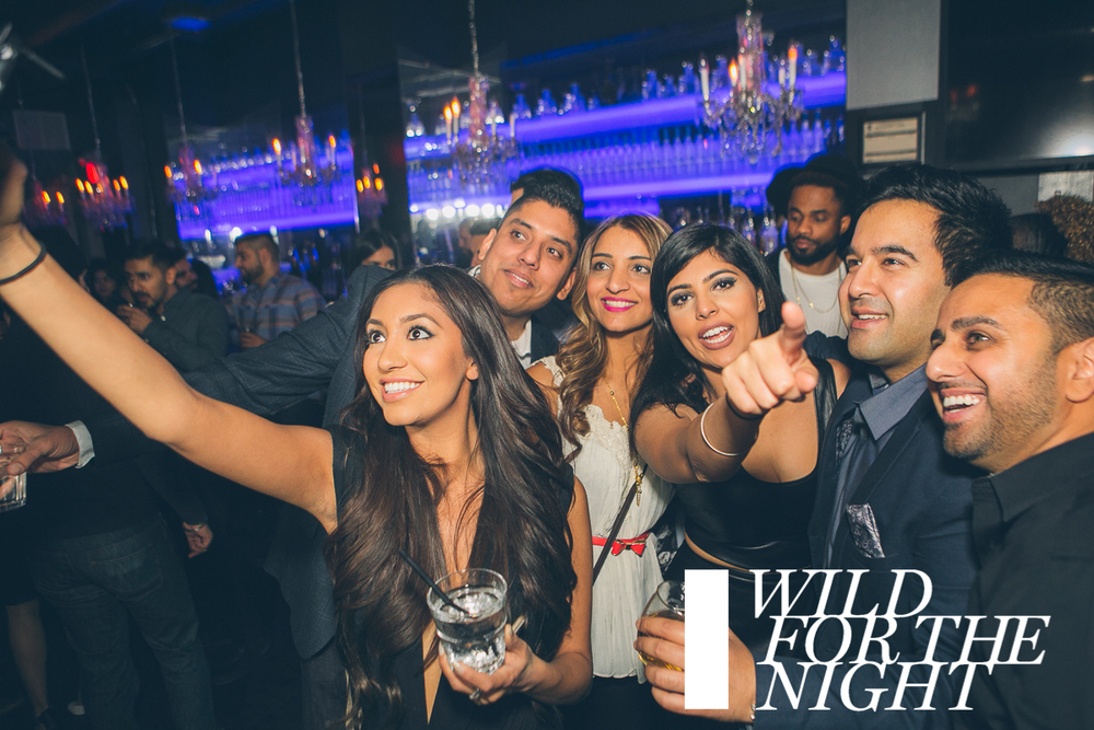 WILD FOR THE NIGHT | Saturday Jan 2 | Stori