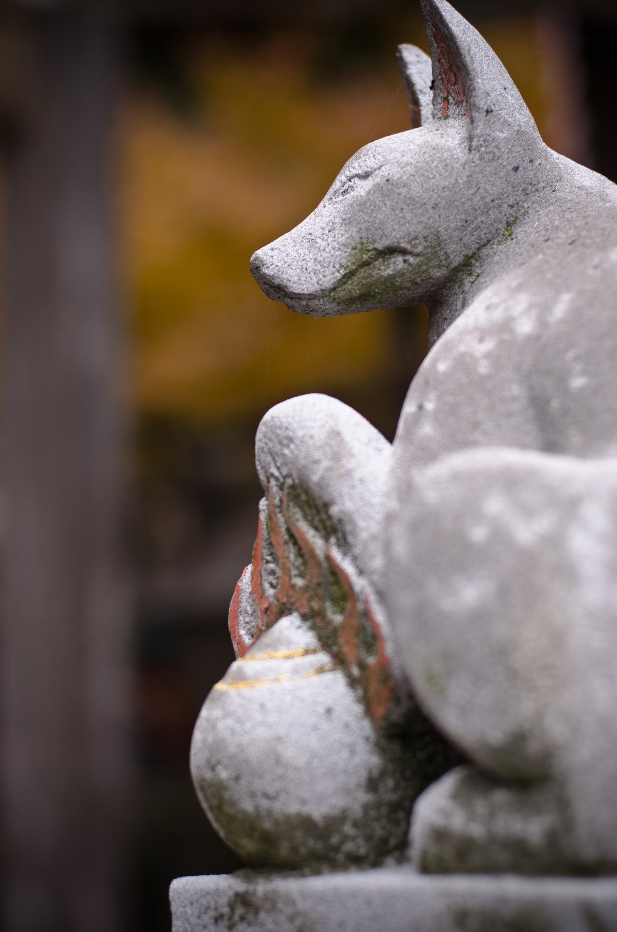 The shrine is dedicated to the Inari, or fox spirit, so it had many cute little fox statues all over.