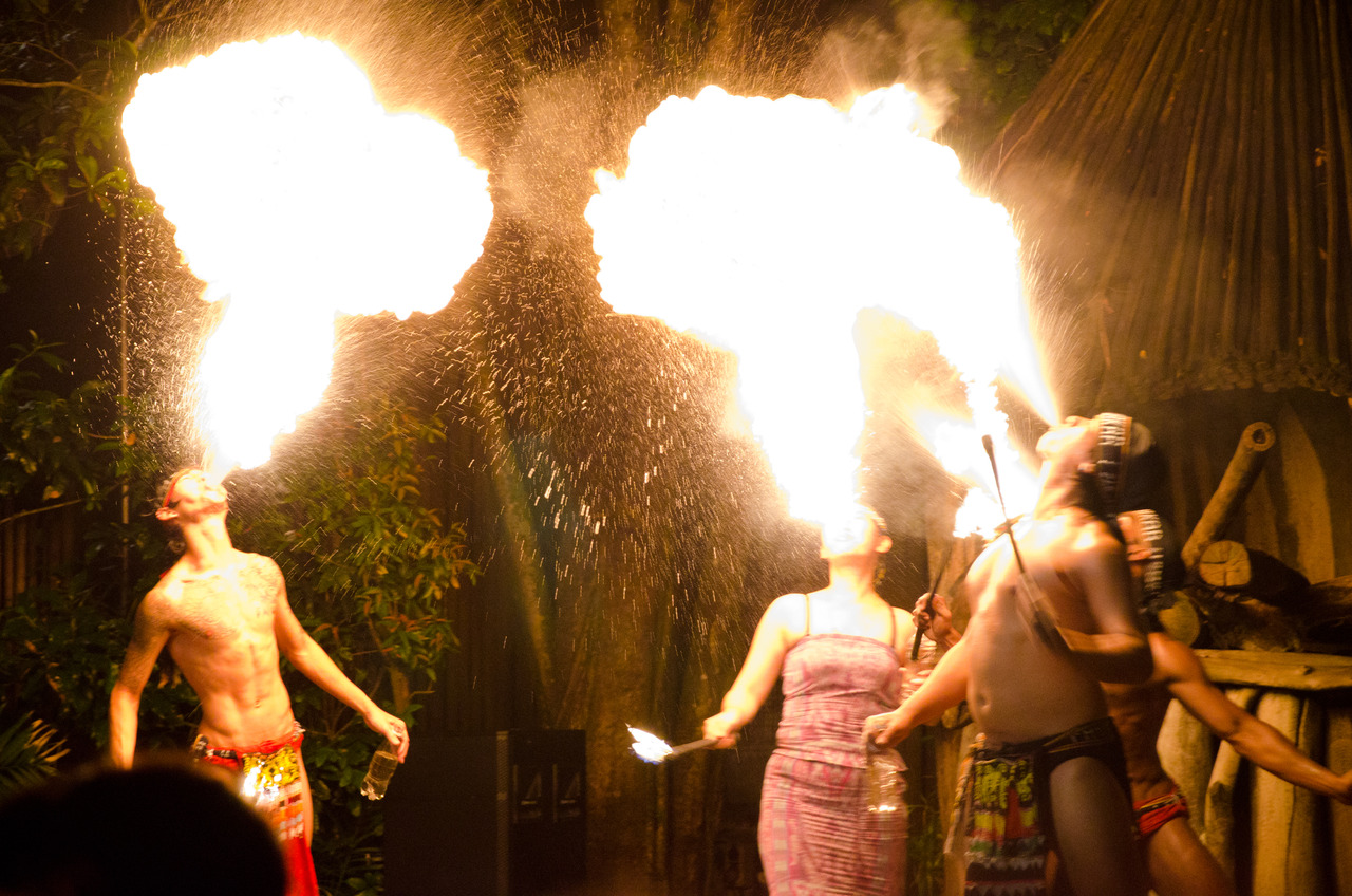 The fire show at Singapore's Night Safari, a nocturnal zoo.