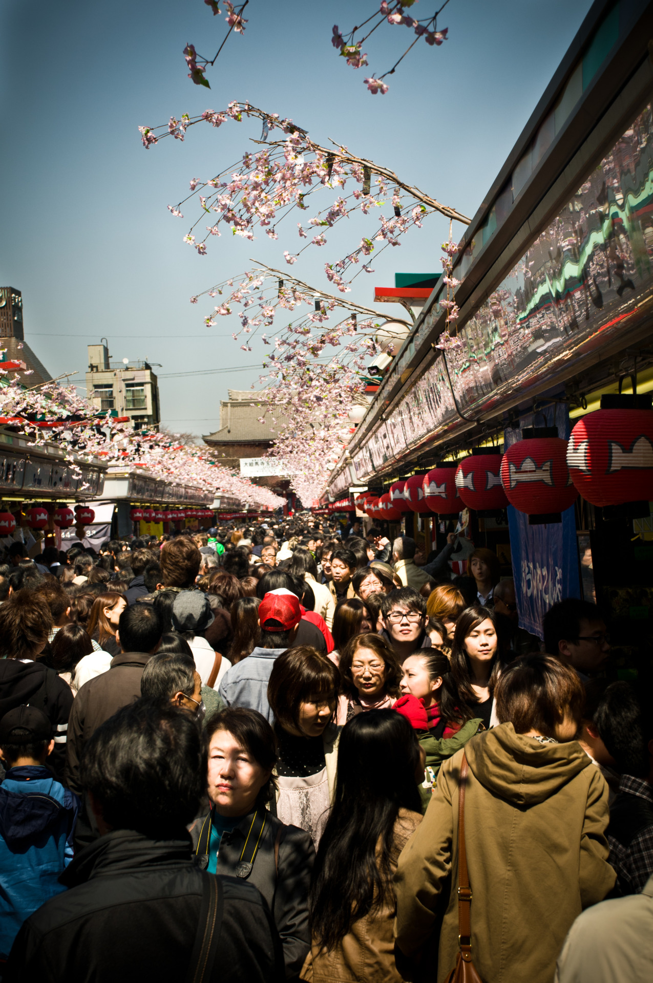 Asakusa Market and Sensoji Temple