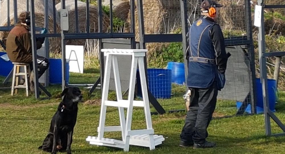 Dog Watches Out With Chalk Farm Team - photo by Stella Gooch